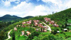 ooty tourism Tripazzi