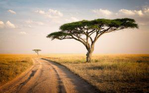 10 देश जहाँ रुपए की कीमत है ज्यादा tanzania Tripazzi