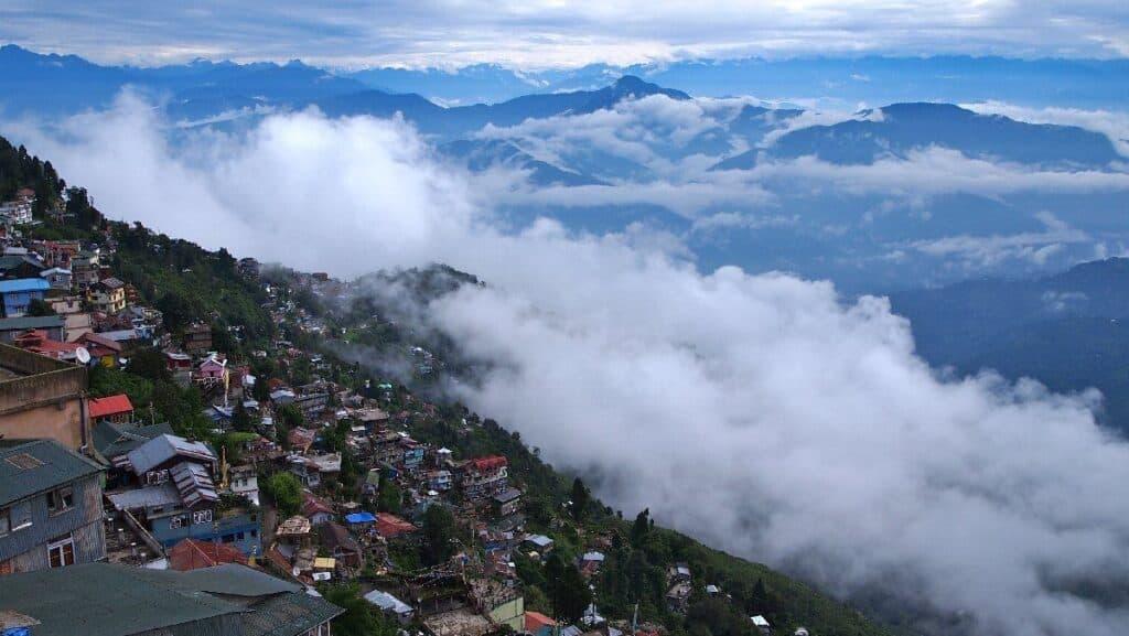 darjeeling Tripazzi