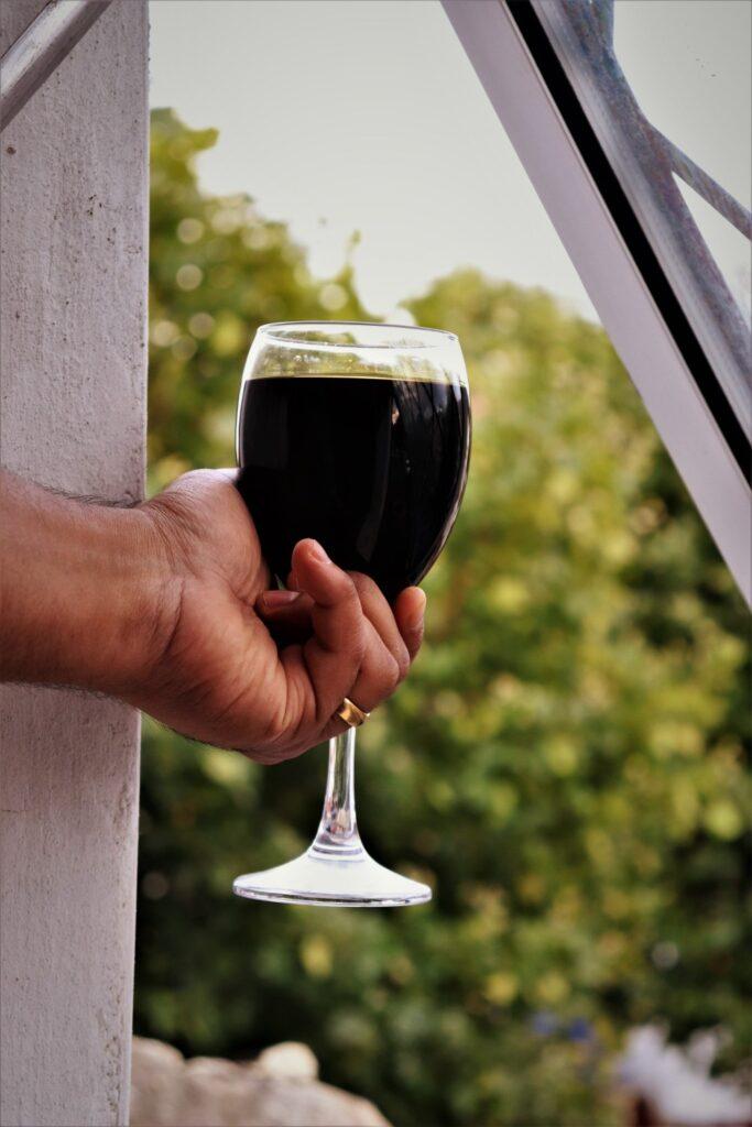 sikkim wine tripazzi
