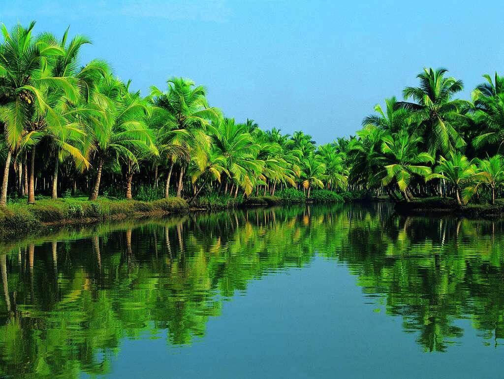 Kerala tripazzi