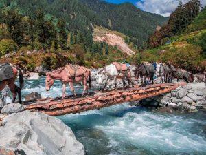 Rajgundha 10 Wonderful Peaceful & Small villages in India Tripazzi